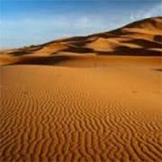 Walk across the Sahara for Abbie's Fund memory boxes